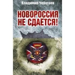 Новороссия не сдается! Барбаросса-2