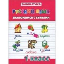 Русский язык. Знакомимся с буквами. 1 класс