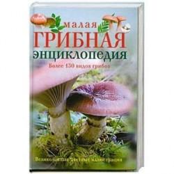 Малая грибная энциклопедия.