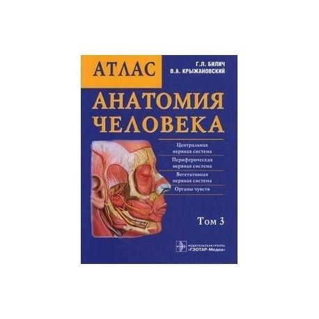 Анатомия человека: атлас в 3 томах. Том  3.