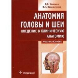 Анатомия головы и шеи. Введение в клиническую анатомию: учебное пособие.