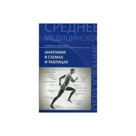 Анатомия в схемах и таблицах: Учебное пособие.