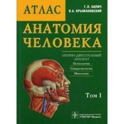 Анатомия человека: Атлас.