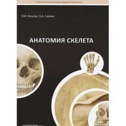 Анатомия скелета. Учебное пособие