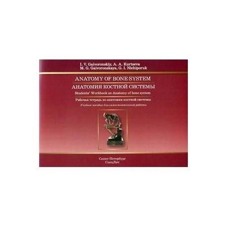 Анатомия костной системы. Рабочая тетрадь (на английском языке)