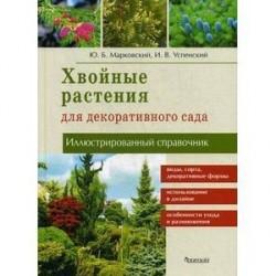 Хвойные растения для декоративного сада