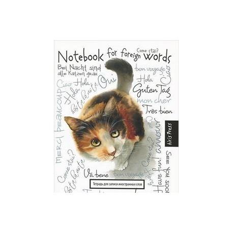 Тетрадь для записи иностранных слов 'Любопытная кошка'
