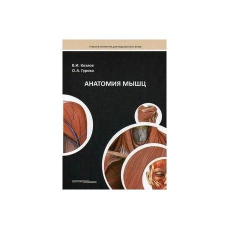 Анатомия мышц: Учебное пособие