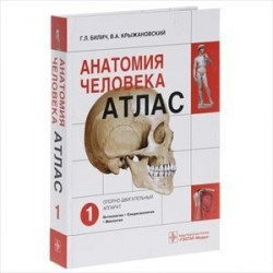 Анатомия человека. Атлас. В 3 томах. Том 1. Опорно-двигательный аппарат