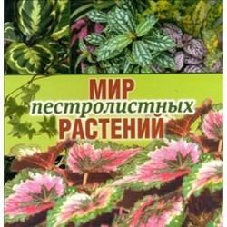 Мир пестролистных растений