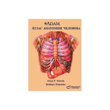 A.D.A.M. Атлас анатомии человека