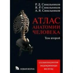 Атлас анатомии человека. В 4-х томах. Том 2. Учение о внутренностях и эндокринных железах