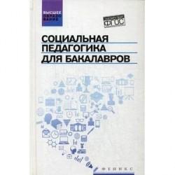 Социальная педагогика для бакалавров. Учебник