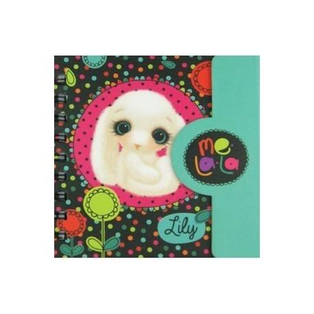 57974 Подарочный дневничок - тетрадь 'Зайчик Lily'
