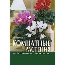 Иллюстрированная энциклопедия. Комнатные растения