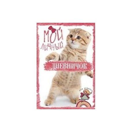 Мой личный дневничок. Рыжий котик
