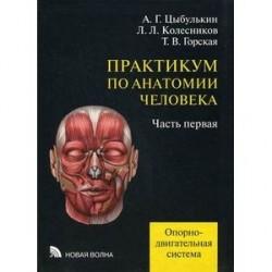 Практикум по анатомии человека. В 4-х частях. Учебное пособие. Часть 1: Опорно-двигательная система. Гриф УМО по медицинскому образованию