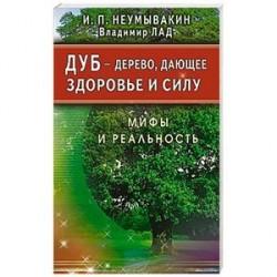 Дуб-дерево,дающее здоровье и силу.Мифы и реальность
