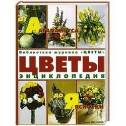 Цветы от Агапантуса до Яснотки