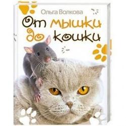 От мышки до кошки