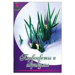 Первоцветы и аврикулы