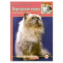 Персидская кошка. Содержание и уход