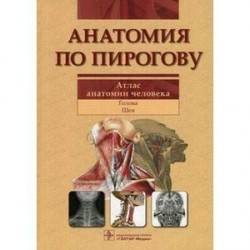 Анатомия по Пирогову. Атлас анатомии человека. Том 2