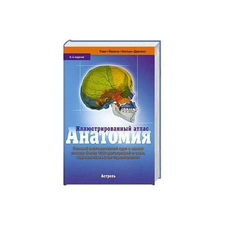 Иллюстрированный атлас. Анатомия. Шестое издание