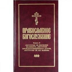 Православное богослужение. Книга 3