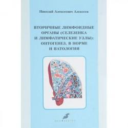Вторичные лимфоидные органы (селезенка и лимфатические узлы ) : онтогенез, в норме и патологии