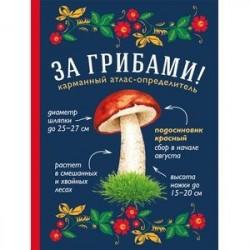 За грибами. Карманный атлас-определитель