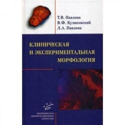 Клиническая и экспериментальная морфология