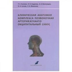 Клиническая анатомия комплекса позвоночная артерия