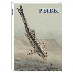 Рыбы (набор из 15 открыток)