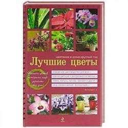 Лучшие цветы. Цветение в доме круглый год