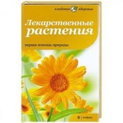 Лекарственные растения. Первая помощь природы