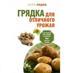 Грядка для отличного урожая. Картофель без химии и хлопот, на любой почве