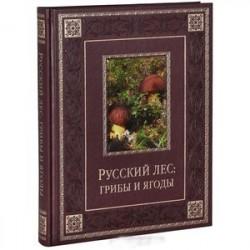 РРусский лес. Грибы и ягоды (подарочное издание)