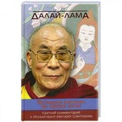 Вспышка молнии во мраке ночи. Краткий комментарий к «Бодхичарья-аватаре» Шантидевы. Далай-лама