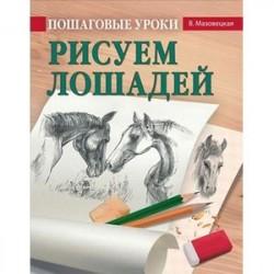 Пошаговые уроки рисования. Рисуем лошадей