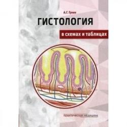Гистология в схемах и таблицах. Учебное пособие. Цветной атлас
