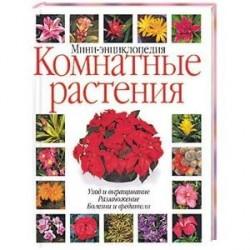 Комнатные растения: мини-энциклопедия