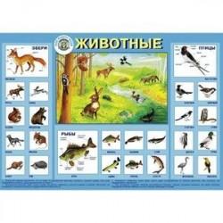 Плакат 'Животные'