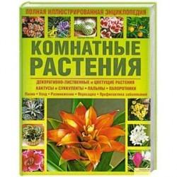 Комнатные растения. Полная иллюстрированная энциклопедия