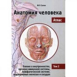 Анатомия человека. Атлас. Том 2: Учение о внутренностях, органах иммунной системы, лимфатической системе, эндокринных
