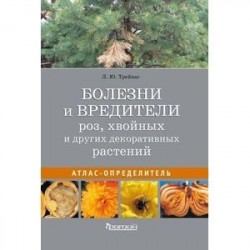 Болезни и вредители роз, хвойных и других декоративных растений