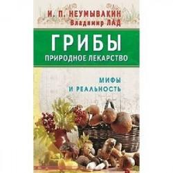 Грибы - природное лекарство