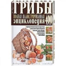 Грибы. Полная иллюстрированная энциклопедия. Более 400 видов грибов