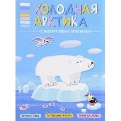 Холодная Арктика