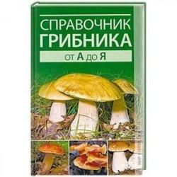 Справочник грибника от А до Я